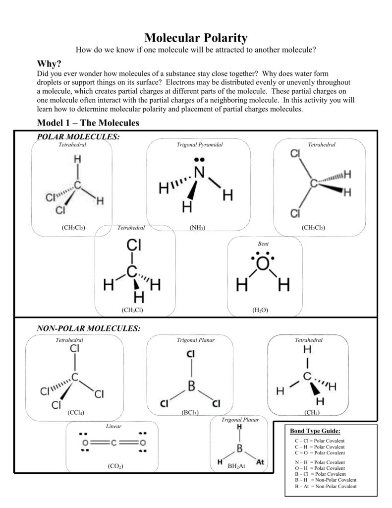 Molecular Polarity Pogil