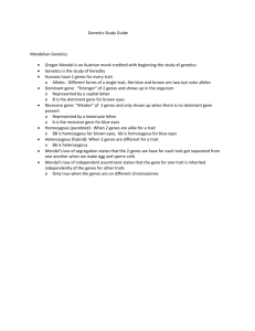 Chapter 12 Genetics Study Guide