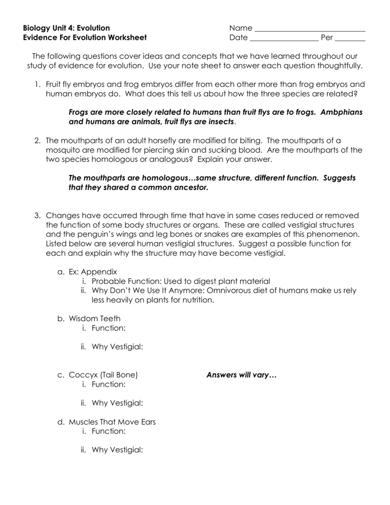 Worksheets Evidence For Evolution Worksheet biology unit 4 evolution