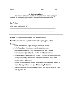 Handouts_Chapter_4_files/Sedimentary Rock Lab