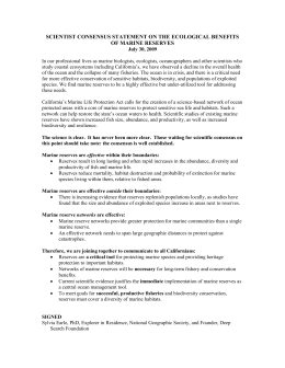Yellowtail Marine, Inc. Case Study Memo