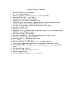 Chapter 6 Essential Questions