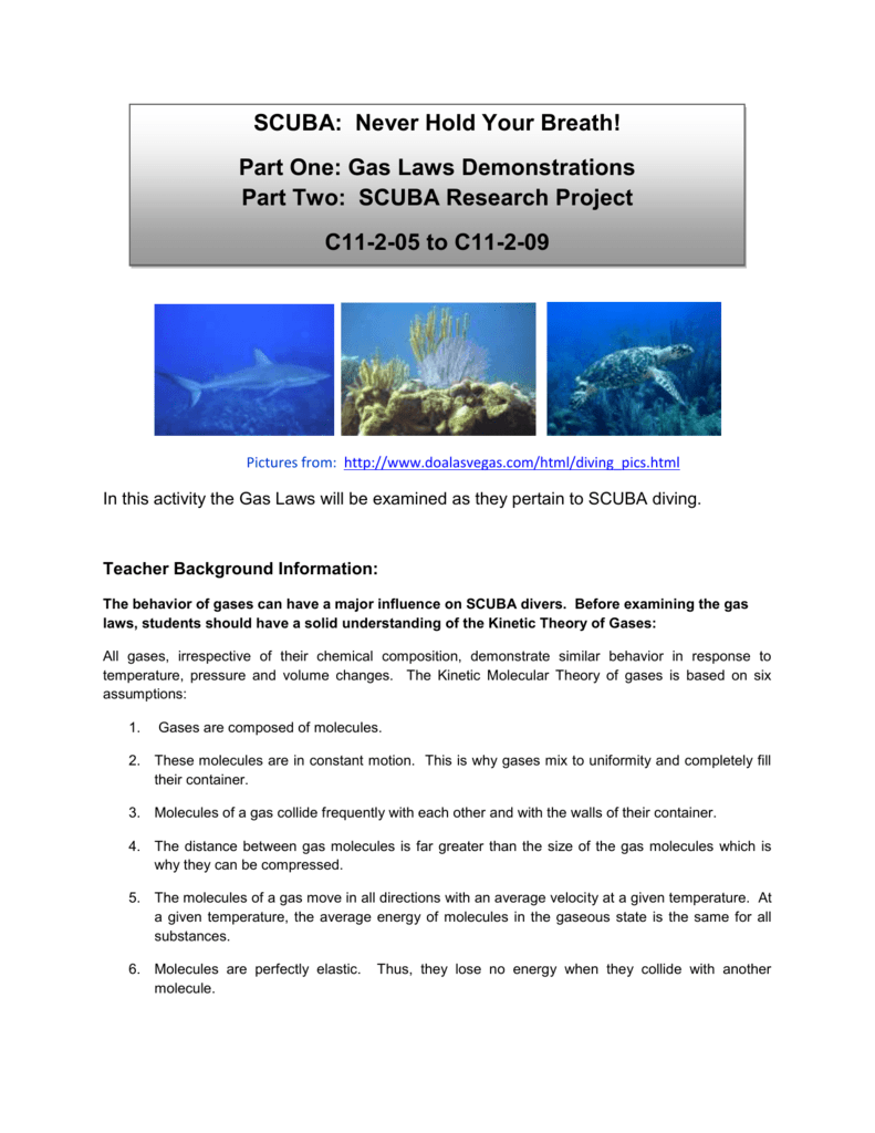 Gas Laws And Scuba Diving Article Answers - Memugaa