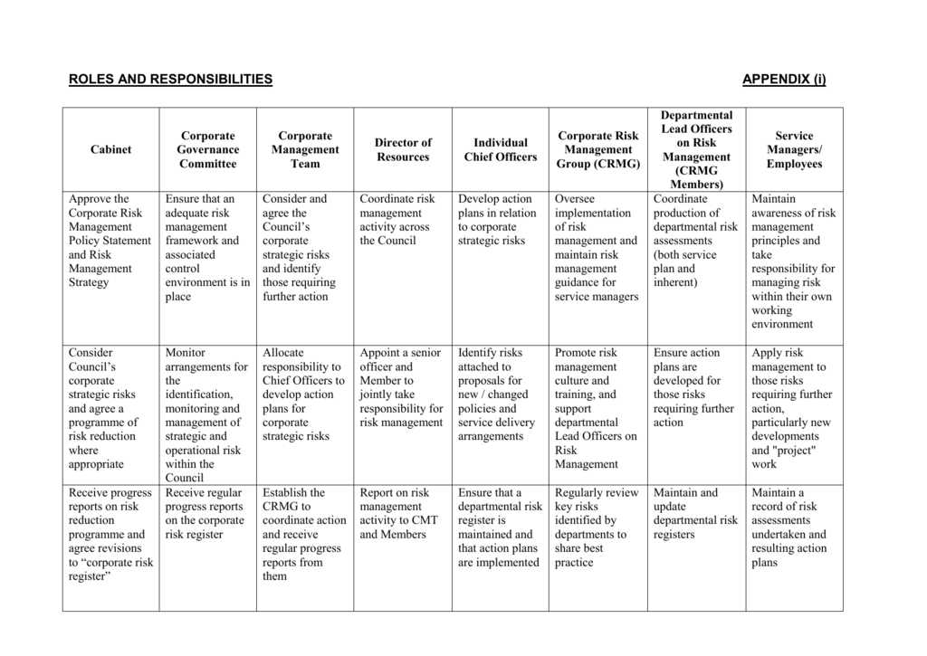 Risk management strategy Appendix (i)