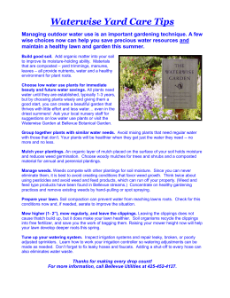 Waterwise Yard Care Tips