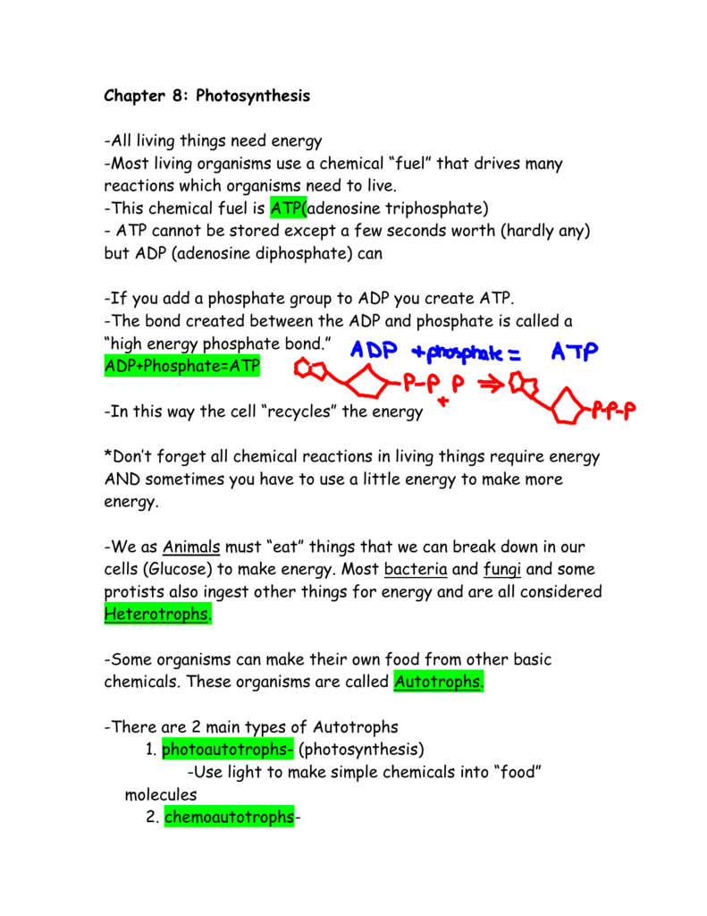 Photosynthesis Worksheet High School Mkrsinfo – Photosynthesis Worksheets