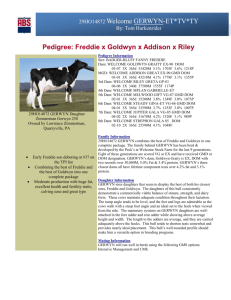 Pedigree Information Sire: BADGER