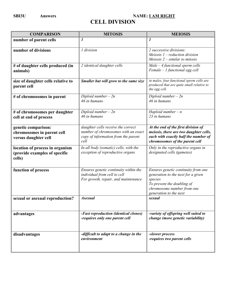 worksheet Mitosis Versus Meiosis Worksheet Answer Key mitosis vs meiosis chart
