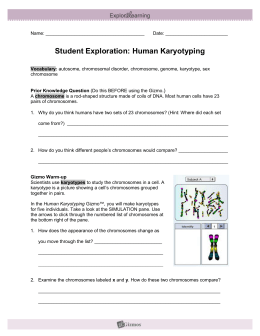 Student Exploration Sheet: Growing Plants - Wood