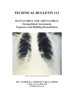 Hantavirus pulmonary syndrome research paper