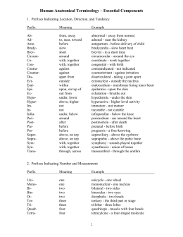 Human Anatomical Terminology \u2013 Essential Components