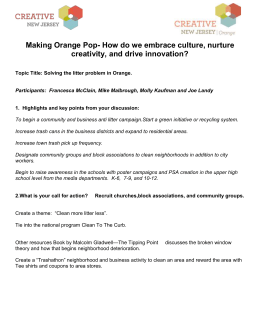 Creative-Orange-Litter-problem-session