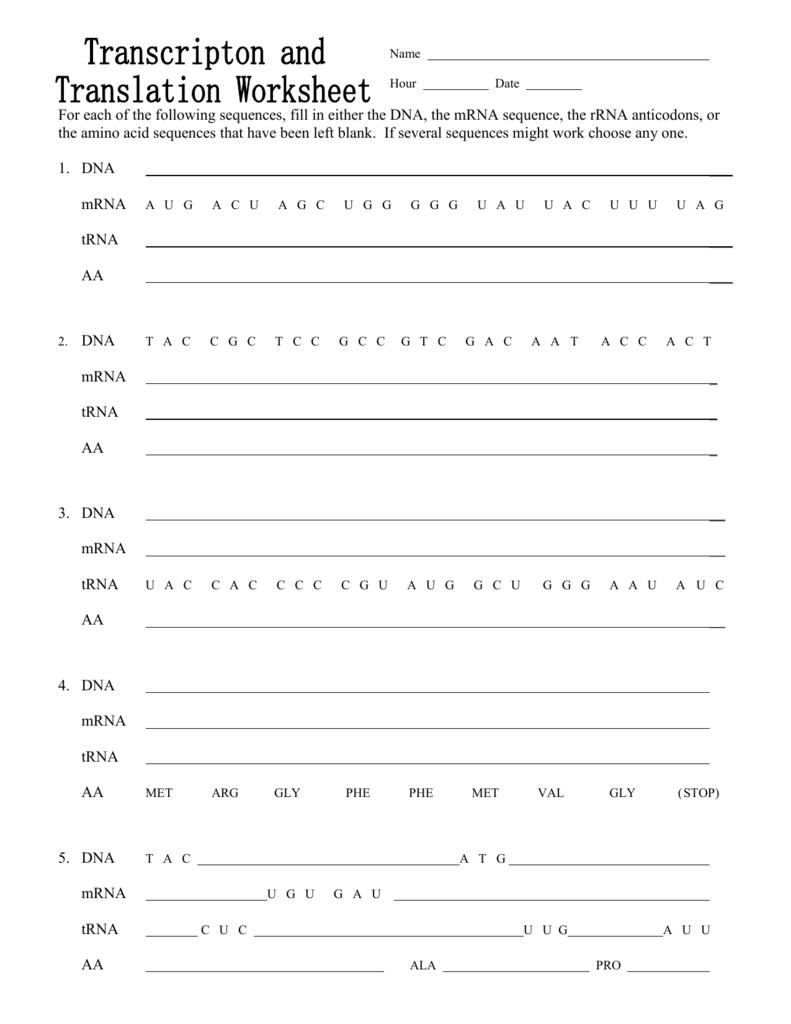 EXTRA CR. transcription and translation worksheet