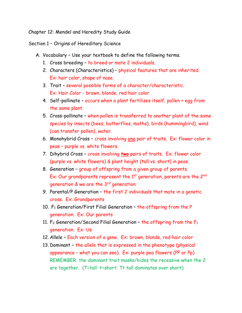 Biology 12 1 worksheet answers