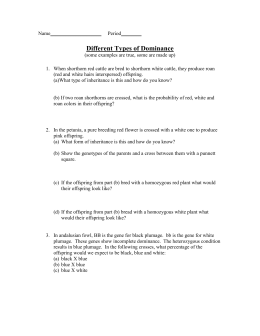 incomplete codominance multiple alleles worksheet. Black Bedroom Furniture Sets. Home Design Ideas