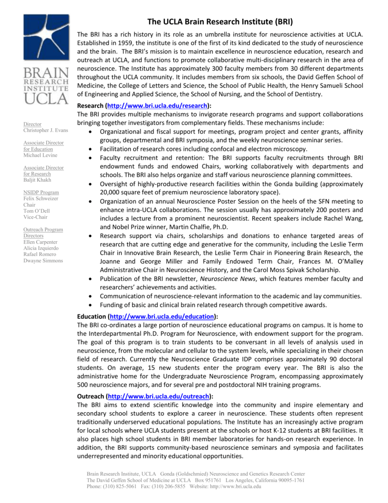snapshot report - UCLA Brain Research Institute