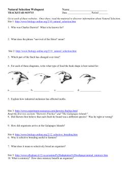 Evolution evolution unit test answers evolution unit test answers photos fandeluxe Image collections