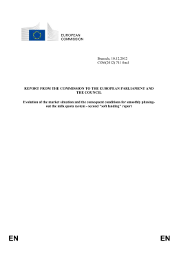 REPORT FROM THE COMMISSION TO THE EUROPEAN