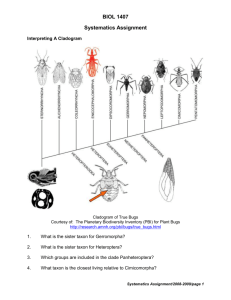 Systematics Assignment revised 2009