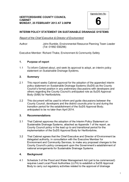 Interim Policy Statement on Sustainable Drainage Systems