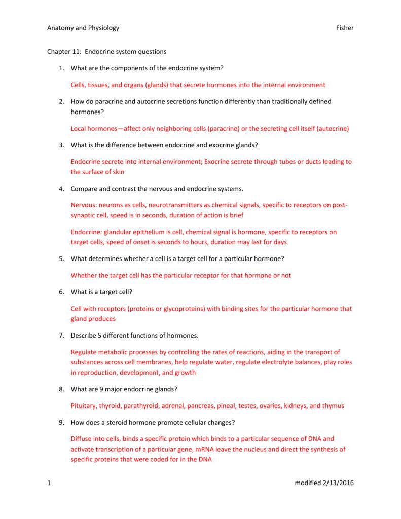 Endocrine system worksheet 1 answers