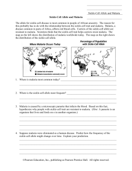 Sickle-Cell Allele and Malaria Worksheet