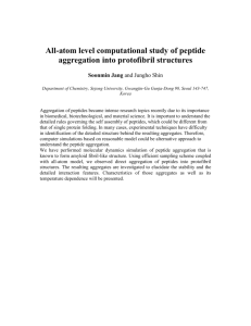 All-Atom Level Computational Study of Peptide Aggregation