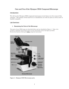 Calculating Total Magnification Of The Microscope