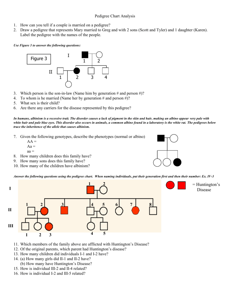 Worksheets Pedigree Chart Worksheet pedigree worksheet