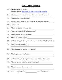 Free Handwriting Worksheets For Preschool Bill Nye Erosion Worksheet Worksheets Reviewrevitol Free  Adding Worksheets For 1st Grade with Medicine Merit Badge Worksheet Pdf Bill Nye Erosion Worksheet Solving Absolute Value Equations Worksheet Answers Word
