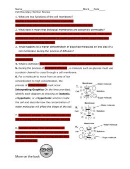 Biozone Biology Workbook
