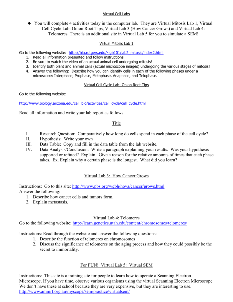 Virtual Cell Labs You will complete 4 activities today in the computer – Virtual Cell Worksheet Answers
