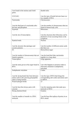 34 Rna Worksheet Answer Key Mr Hoyle - Worksheet Project List