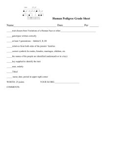 Human Pedigree Grade Sheet