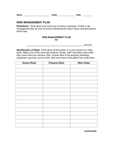 risk management plan for
