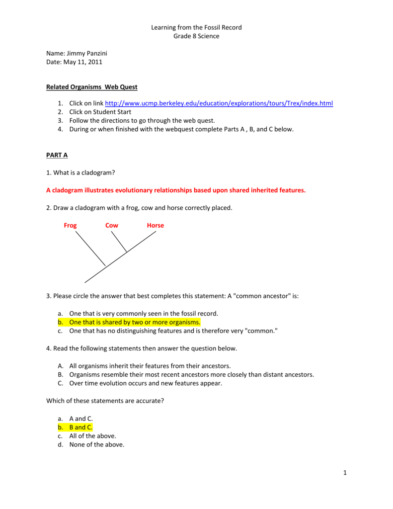 Cladogram practice 2 worksheet answers