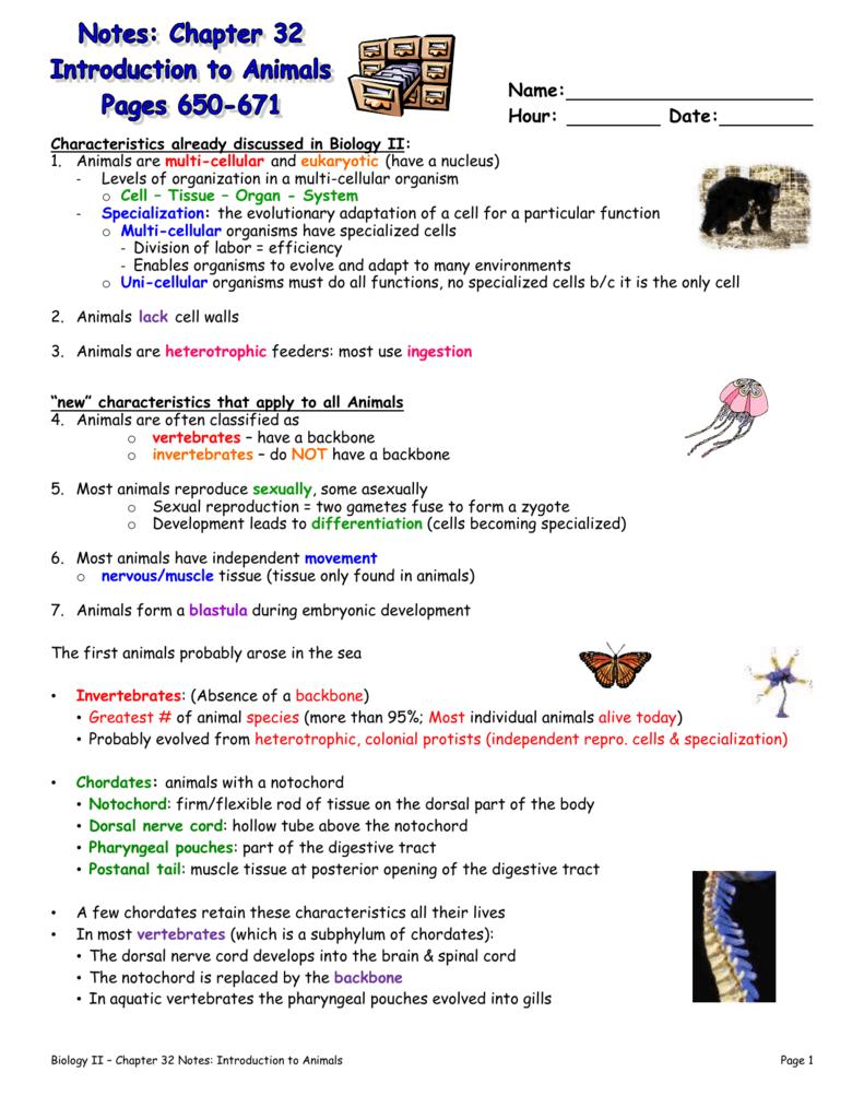 Chordata asexual reproduction worksheets