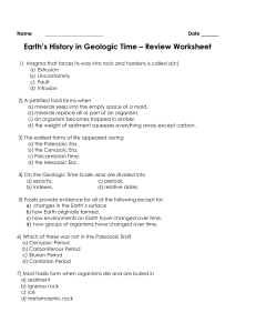 C7 Fossils and Geologic Time REVIEW packet