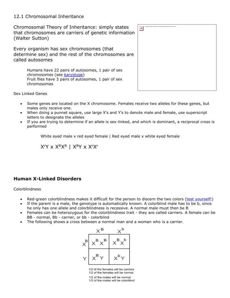 Printables of Dihybrid Cross Worksheet Answer Key Biology ...