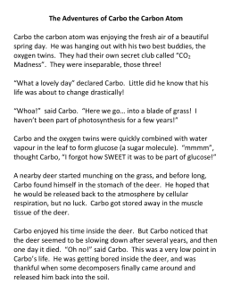 The Adventures of Carbo the Carbon Atom