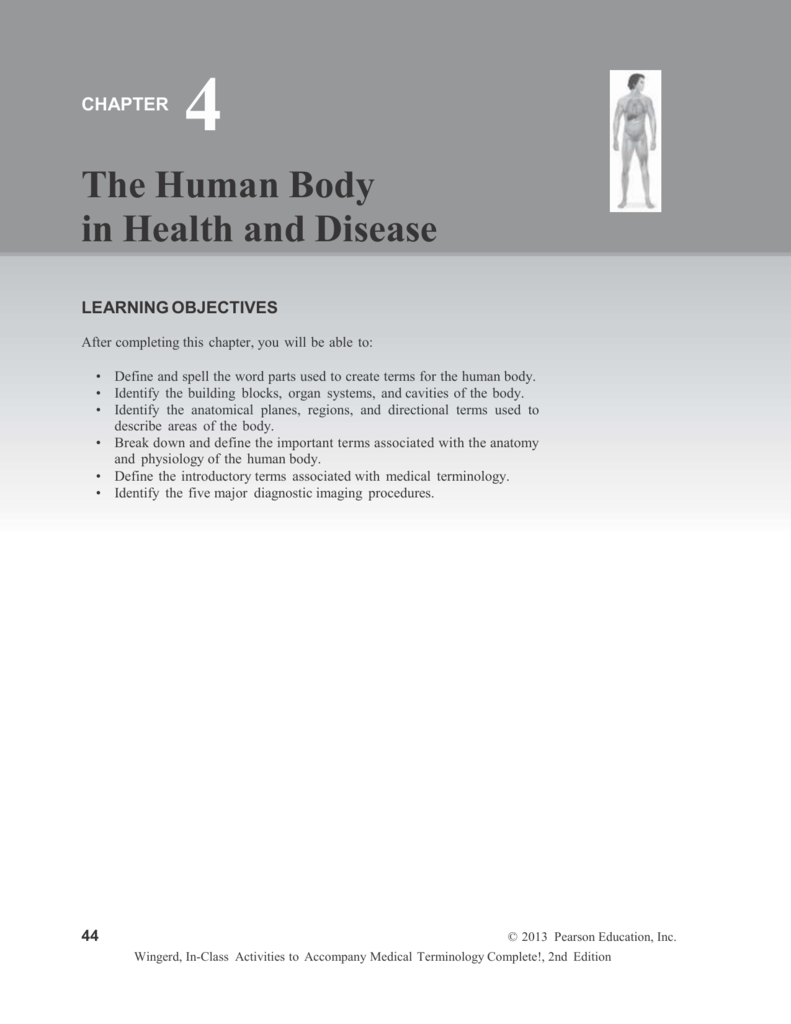 Chapter - Human Anatomy