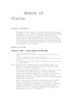 Module 18 Vision Module Preview The task of each sense is to