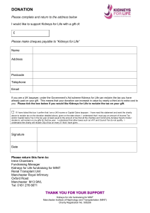 Donation-Form-Word-Format