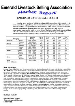 EMERALD CATTLE SALE 08-05-14 Another large yarding of 4600