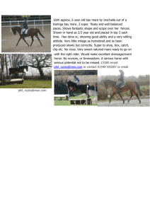 16hh approx, 6 year old bay mare by Inschalla out of a Karinga bay