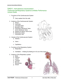 describe the musculoskeletal and energy systems response to acute exercise