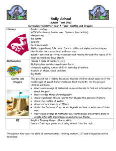 Curriculum Newsletter - Sully Primary School