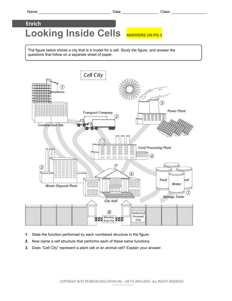 Plant Cell City Diagram Great Installation Of Wiring Cells Labeled Subcon Rh 18 3 Ocotillo Paysage Com