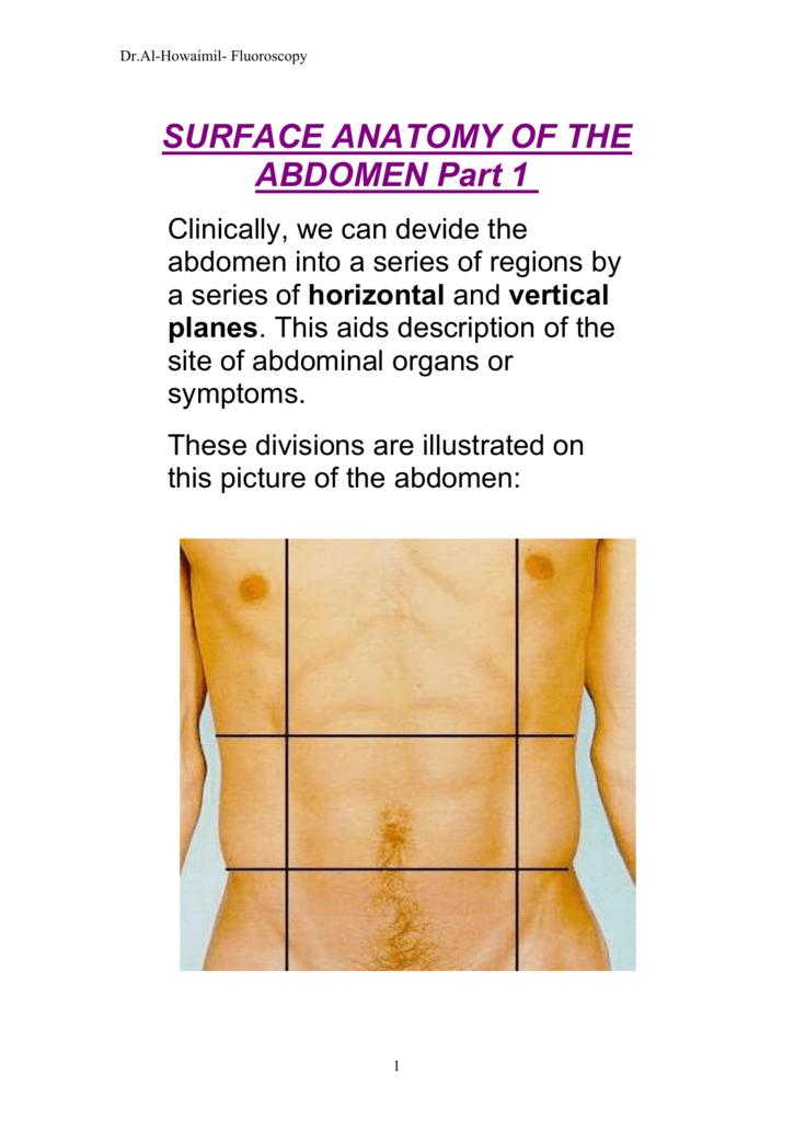 Surface Anatomy Of The Abdomen Part 1