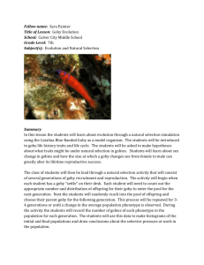 SP_goby_activity